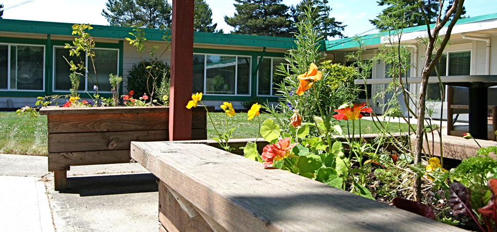 Colorful backyard garden at our retirement community in Florence, OR 97439