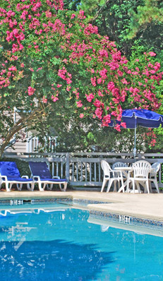 Apartments for rent in north raleigh at Bryn Athyn at Six Forks