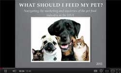 What Should I Feed My Pet (intro)