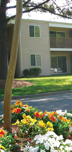 Take in the beauty of the flowers at Yorktown apartments