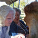 Resident pets camel at Silverado assisted living community in Kingwood Texas