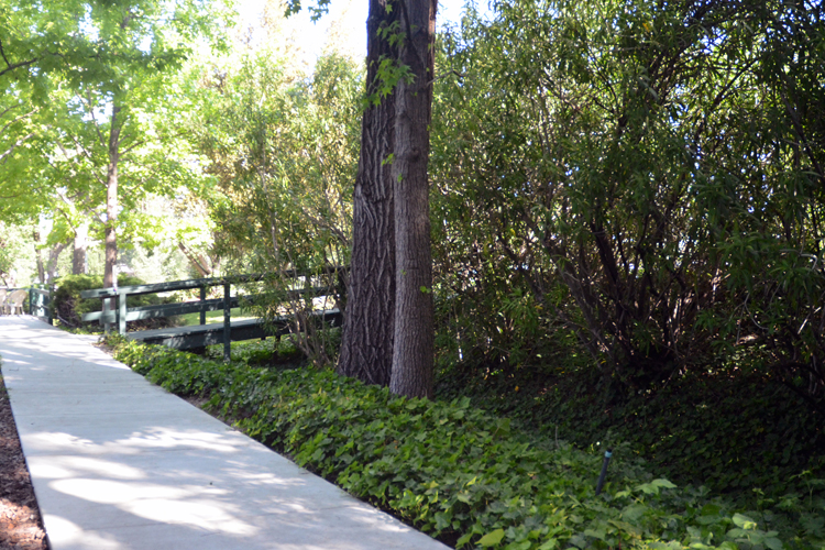 Well landscaped grounds featured at Walnut Creek senior living community