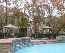 Apartment amenities in Westchase District