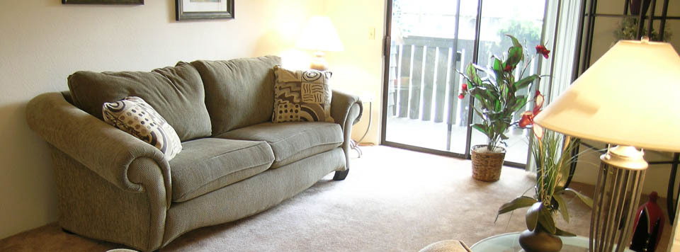 Apartments in Renton have comfortable living rooms