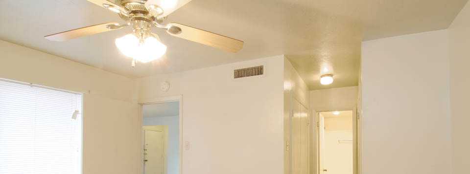 Light fixures and ceiling fans come in the living rooms are apartments in Dallas