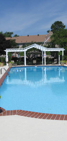 Old donation Apartments in Virginia Beach have a sparkling swimming pool