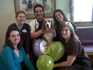 Oakwood animal hospital team photo
