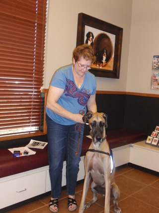 Visit our wonderful animal hospital in Boise, ID