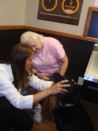 Vet giving dental exam in Boise, ID