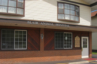 Learn more about Blair Animal Hospital in Duncansville, PA