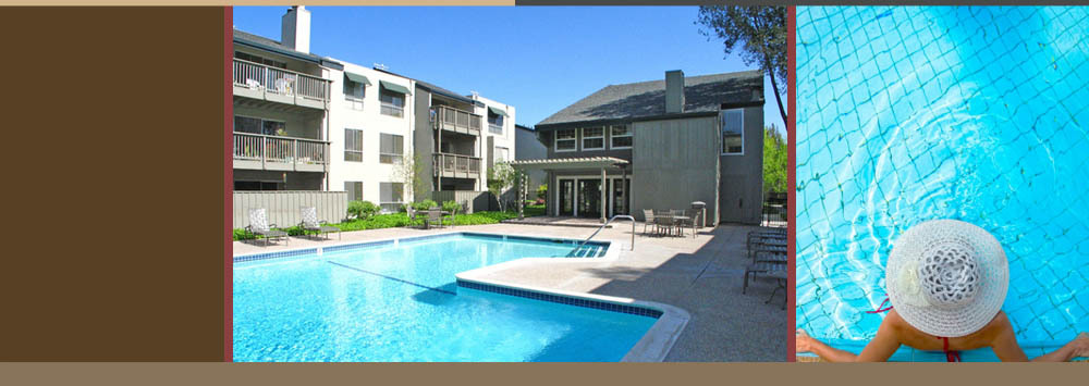 Take a dip in the swimming pool at Fremont apartments