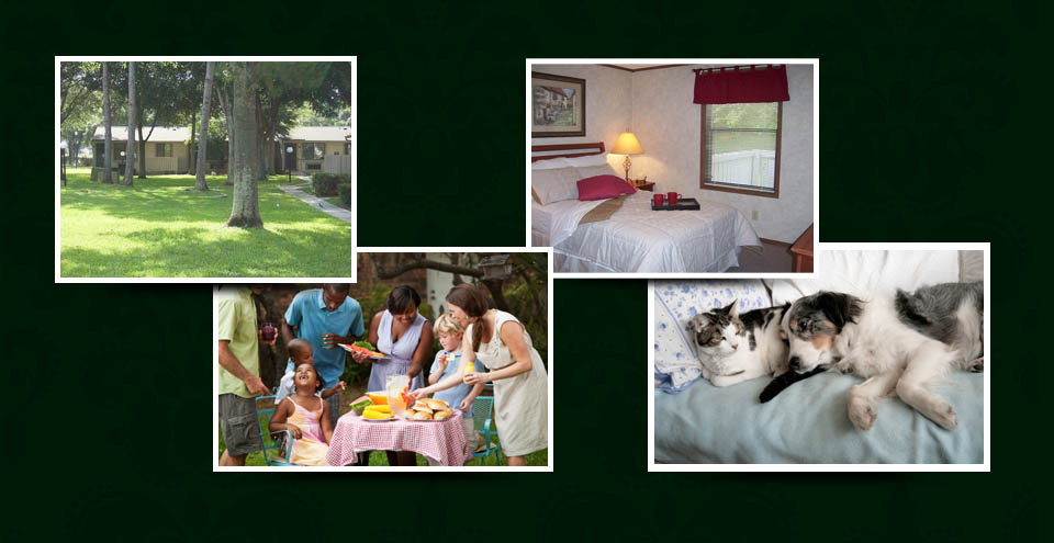 Apartments for rent in Port Richey