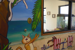 Admire the beautiful mural at the pet resort in Andover, KS