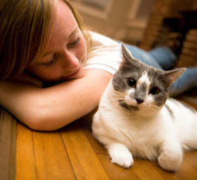 Learn more about pet friendly apartments in Berkeley