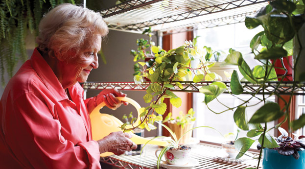 Gardening senior living in charlevoix