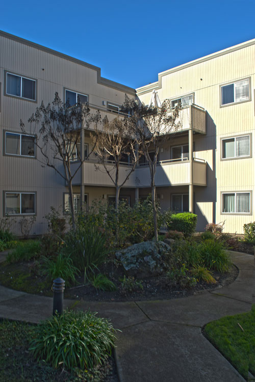 Beautiful courtyard featured at living community in Hayward, CA