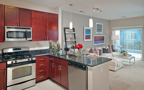 Modern kitchens at Silver Spring apartments