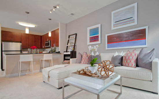 Open design at Silver Spring apartments