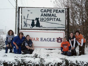 About Cape Fear Animal Hospital in Fayetteville