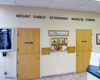 Reception mt diablo vet med center