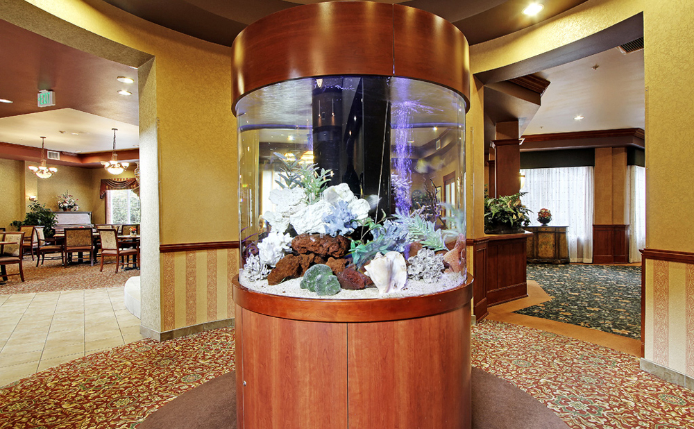 Fish tank at senior living in Kent
