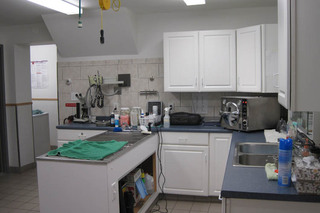 Lab at kenmore veterinary clinic