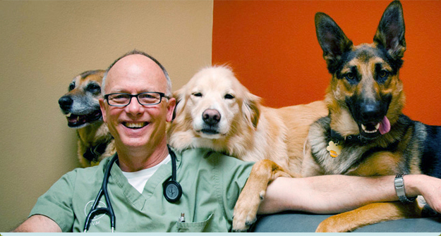 Read what new events and happenings are occuring at National Veterinary Associates.
