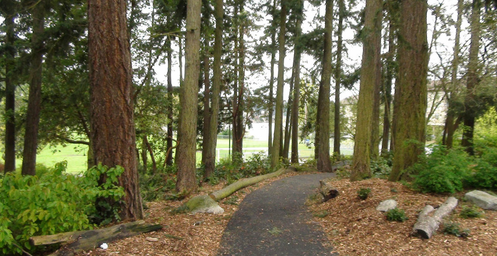 Seattle apartments have a wooded path