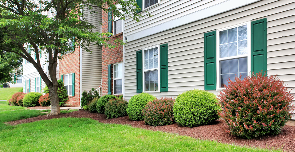 Apartments in Fredericksburg have lush landscaping