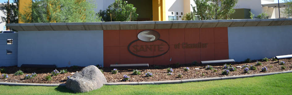 Skilled nursing chandler az