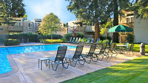Learn more about the amenities offered at Brookdale Apartments
