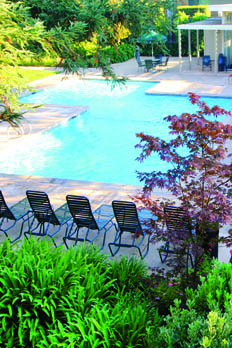 Enjoy a variety of amenities at apartments in San Jose