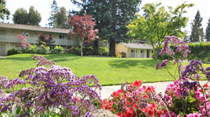 Learn more about Sunnyvale apartments near De Anza Park