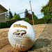 Thumb-volley-ball-mountain-view-apartments