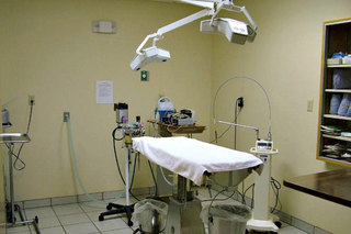 Surgery suite at benton harbor vet clinic