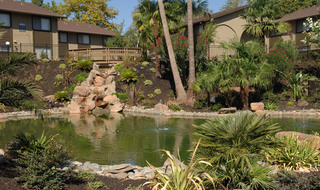 Apartments in Fair Oaks water feature