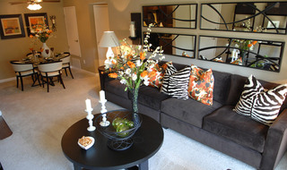 Living room with zebra pillows at Fair Oaks apartments