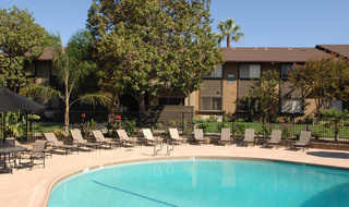 Apartments in Fair Oaks have a pool