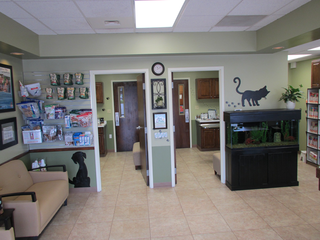 Coal creek veterinarian