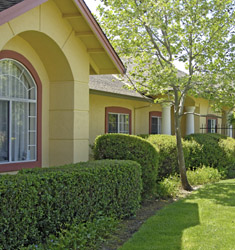 spacious senior apartments in Petaluma