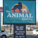 Sign at animal hospital on the golden strip