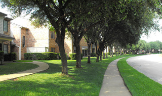 Neighborhood of apartments in Irving