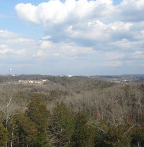Learn more about Branson condo amenities