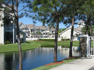 Lake at apartments in New Port Richey