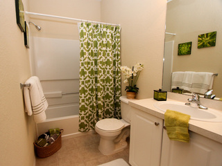 New Port Richey offers spacious bathrooms