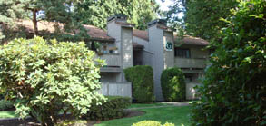 kirkland washington apartment