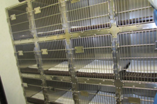 Boarding kennels are available for your cat