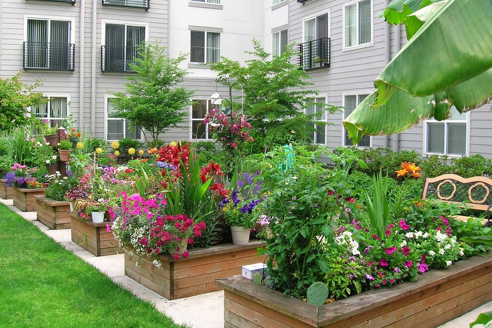 Our senior living community in Portland has a beautiful garden