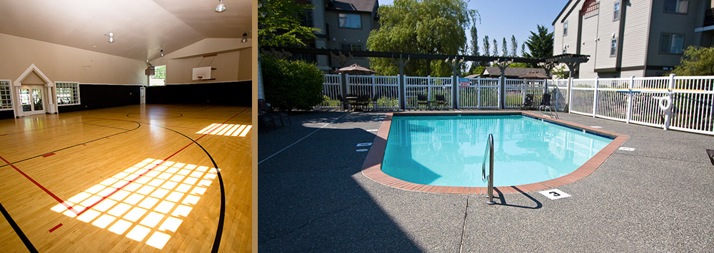 Everett washington apartments feature a swimming pool and basketball court
