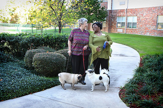 Pet friendly arlington tx senior living